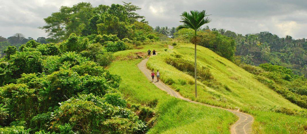 Campuhan Walk Ridge in Ubud